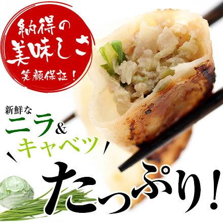 宇都宮おいしい餃子(冷凍) 100個 本場宇都宮より直送 ギョーザ 宇都宮餃子