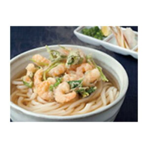 四国日清食品 「麺の味わい」冷凍 さぬきうどん 250g×40個×1箱