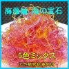 海藻麺5色ミックス1K