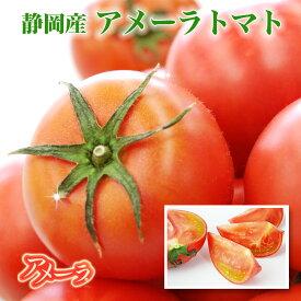 静岡県産 アメーラトマト【秀品】9〜13個【 高糖度 フルーツトマト ギフト プレゼント 誕生日 グルメ こだわりトマト 高糖度トマト とまと】