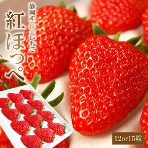 静岡産紅ほっぺいちご特大サイズ(12or15粒入)【お歳暮 お誕生日 お祝 内祝 御礼】