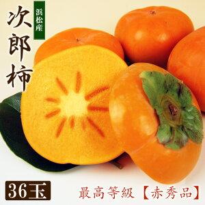 浜北産次郎柿(露地栽培)【秀品】大玉サイズ36個(約10キロ・専用ダンボール箱入り)