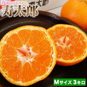 静岡産寿太郎みかん【赤秀品】Mサイズ3キロ
