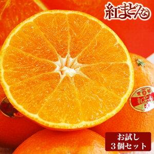 バイヤー厳選!お試しセット 愛媛産柑橘「紅まどんな」3Lサイズ【青秀品】3個入り