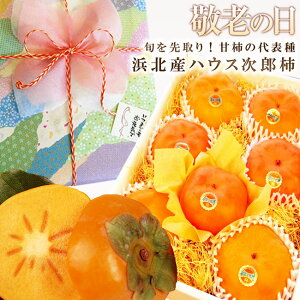 敬老の日ラッピング付♪静岡県浜北産ハウス次郎柿 ギフト 贈り物 果物 くだもの フルーツ お祝 お礼 見舞 誕生日 おじいちゃん おばあちゃん おしゃれ きれい