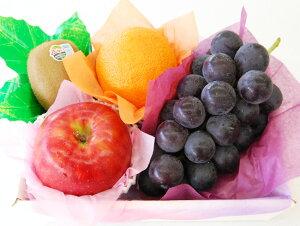 【 あす楽 15時 】秋のプチフルーツセット 敬老の日 種なし ぶどう ブドウ 巨峰 国産 ギフト 贈り物 果物 くだもの フルーツセット 内祝 お祝い お礼 見舞い お誕生日 りんご けいろう おじい