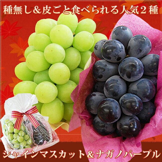 ラッピング 2色ぶどうセット(ナガノパープル&シャインマスカット)【 敬老の日 内祝 お祝い お礼 見舞い お誕生日 】