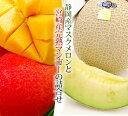 静岡産マスクメロン(中玉サイズ)と【特大4Lサイズ】宮崎産マンゴーのセット