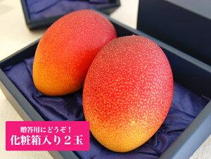 宮崎産樹上完熟マンゴー大玉2Lサイズ【秀品】2個セット(贈答用化粧箱入り)