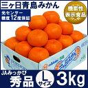 三ケ日青島みかん【秀品】Lサイズ3キロ(23個前後)(三ヶ日みかん)