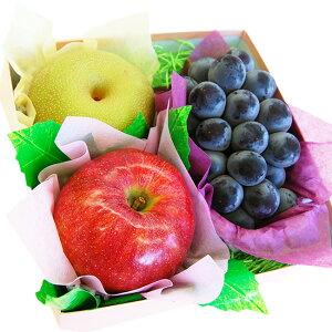 【 あす楽 15時 】秋のジューシーフルーツセット( 巨峰またはピオーネ・梨・りんご) 敬老の日 種なし ぶどう ブドウ 国産 ギフト 贈り物 果物 くだもの 内祝 お祝い お礼 見舞い お誕生日