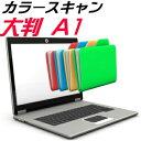 カラー スキャン A1 大判 大型 スキャニング サービス JPG