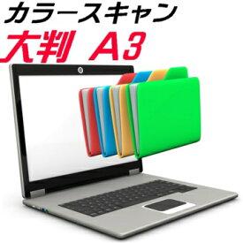 カラー スキャン A3 大判 大型 スキャニング サービス JPG