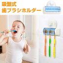 吸盤式 歯ブラシホルダー ブラシヘッドを清潔に保とう 5本まで収納可能 ハブラシ スタンド 洗面所 歯ブラシたて◇ALW-TOOTH-HOLDER