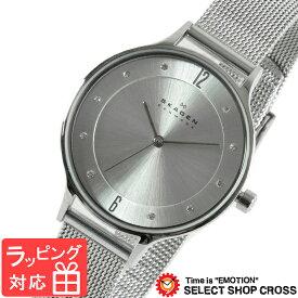 【3年保証】 スカーゲン メンズ レディース ユニセックス 腕時計 SKAGEN 時計 スカーゲン 時計 SKAGEN 腕時計 ANITA ア二タ クオーツ ブランド SKW2149 シルバー スカーゲン レディース 【あす楽】