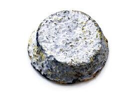 セル・シュール・シェールAOP 農家製【山羊乳製チーズ/シェーブル/フランス】