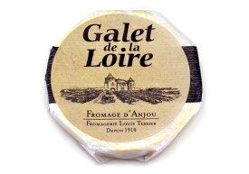 ガレ・ド・ラ・ロワール【ウオッシュタイプチーズ/フランス】