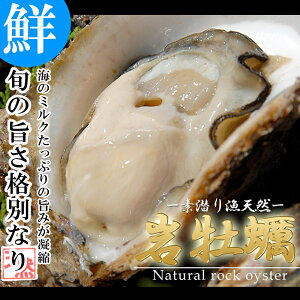 【20%OFFクーポン】 天然活き岩牡蠣 7〜13個 約3kg 大分県産 牡蛎 カキ かき 加熱用 【送料無料】