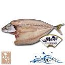 関サバ一夜干し 2Lサイズ 1枚 大分県佐賀関漁業協同組合 ブランド魚 関さば 鯖 干物