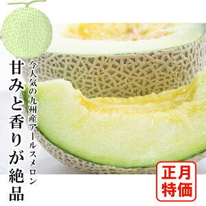 【正月特価】宮崎県産 アールスメロン 1玉入 約1〜1.5kg 在庫のみ限定
