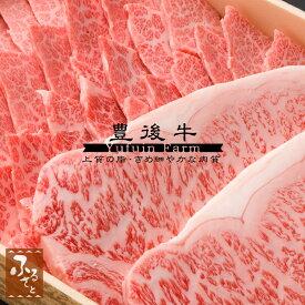 【豊後牛】サーロインステーキ180g×2枚・三角バラ焼肉用500g セット (生肉冷蔵便/大分県産/国産/黒毛和牛/牛肉/MSSB-150)