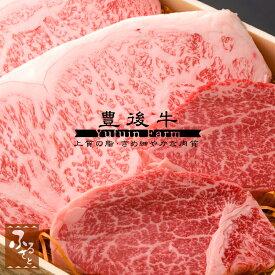 【豊後牛】ステーキセット サーロイン180g×2枚・ヒレ130g×2枚(生肉冷蔵便/大分県産/国産/黒毛和牛/牛肉/MSSHS-120)
