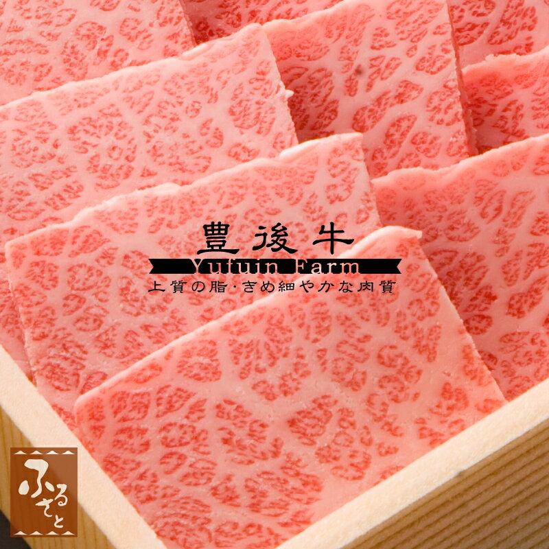 【豊後牛】三角バラ焼肉用600g (生肉冷蔵便/大分県産/国産/黒毛和牛/牛肉/MSB-100)