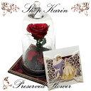 プリザーブドフラワー 美女と野獣 ディズニー美女と野獣メッセージカード入れ付き 一本薔薇 ガラスドーム 誕生日プ…