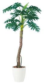 観葉植物 インテリア 大型 人工観葉植物 消臭・抗菌 UDD触媒 ニューセローム 170cm 送料無料 フェイクグリーン 【RCP】