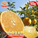 《あす楽対応》 はっさく 訳あり ・ 木成り はっさく 10kg 送料無料 和歌山産 柑橘 みかん 果物 フルーツ ハッサク 八…