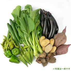 【和気健康農業研究会】江見さんの季節の野菜詰合せ7種