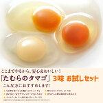 たむらのタマゴ3味お試しセット新登場!