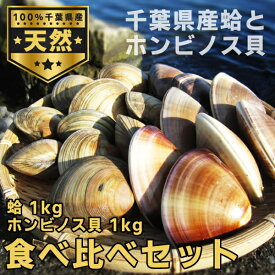 【送料無料】天然本蛤 ホンビノス貝 貝の食べ比べセット 千葉県特産 貝食べ比べ 【東安房漁業協同組合】