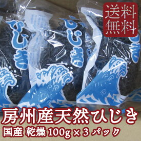 【送料無料】房州産 乾燥 ひじき 100g 3パック セット 千葉県 名産【東安房漁業協同組合】