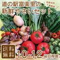 【送料無料】道の駅厳選採れたて新鮮野菜セット10品目以上詰め合わせ【富楽里とみやま】