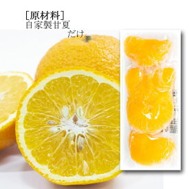 【送料無料】 南房総市産 冷凍 甘夏 4粒入 16パック 冷凍フルーツ 国産 柑橘 【がんばれるごはん】