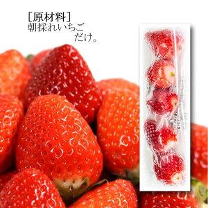 【送料無料】 南房総市産 冷凍 いちご 5粒入 16パック 冷凍フルーツ 国産 苺 【がんばれるごはん】