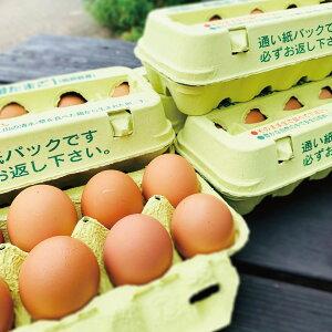 【送料無料】 平飼い 有精卵 10個入 5パック セット 卵 【清水クリーンファーム】