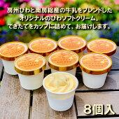 びわソフトクリームアイス8個入