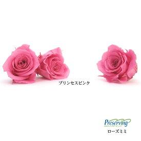 【訳あり】ローズ・ミミ  プリンセスピンク  2輪