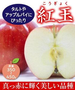 【リンゴ苗木】【2年生苗】紅玉(こうぎょく) 高さ70cm〜1.0m