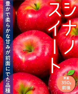 【リンゴ苗木】【2年生苗】シナノスイート 高さ70cm〜1.0m