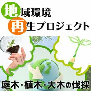 庭木・植木・大木の伐採「グリロケ伐採」