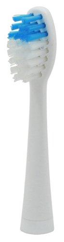 DRETEC 「ドクター・ソニック」 交換用ブラシ KB-303BL【02P06Aug16】