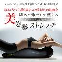 【正規代理店】MTG Style(スタイル) Athlete Pole ブラック