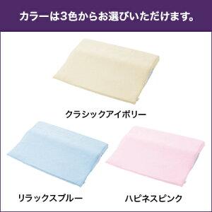 【正規品】トゥルースリーパーセブンスピローダブルサイズカバー2枚セットショップジャパン低反発まくら寝具