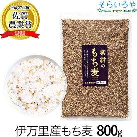 もち麦 国産 (佐賀県産) 「紫紺のもち麦」800g 送料無料 令和元年産 無添加 希少な国産ダイシモチ100% 食物繊維たっぷり 腹持ちよくダイエットにも もち麦ごはん 麦飯 大麦