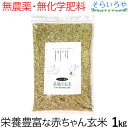 薬膳のお米 1kg 栄養価の高い赤ちゃん玄米 無農薬 無化学肥料 西日本産