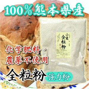 全粒粉(強力粉)熊本県産無農薬・化学肥料不使用【熊本県】500グラム