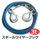 ワイヤー ロープ 全長4m 耐久重量3t 吊り下げ 吊り具 牽引ワイヤー 牽引 フック フック付き スチール ワイヤーフック …